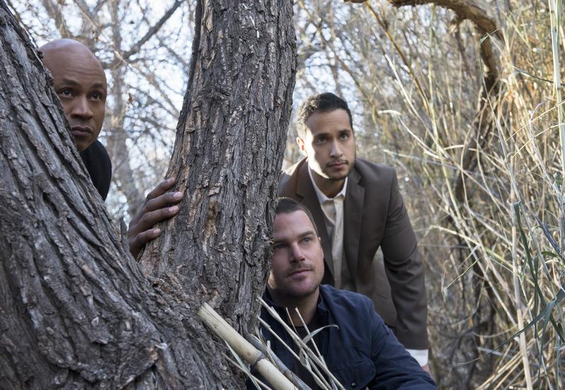 Saison 6 Episode 15 - L'arbre qui cache la forêt
