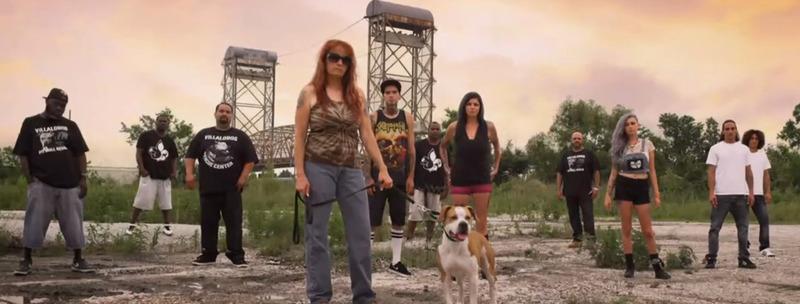 pitbull et prisonnier saison 9