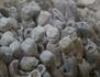 Chine : trésors perdus de la dynastie des Han