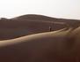Vitesse mortelle dans le désert
