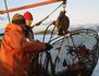 Les pêcheurs de crabes de la Terre de Feu